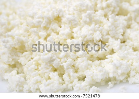 Soft cottage cheese close-up - stock photo