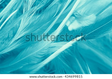 soft feather luxurious background color turquoise,Emerald green texture background - stock photo