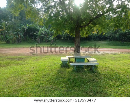 soft focus chairs under the trees and green grass.