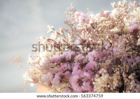soft focus of bouquet a vintage tone color of gypsophila flower or babys breath flowers