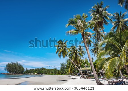 soft focus of coconut tree and beach wooden bed on white sand with beautiful blue sea over clear blue. Koh Kood island Trat Province, Thailand.