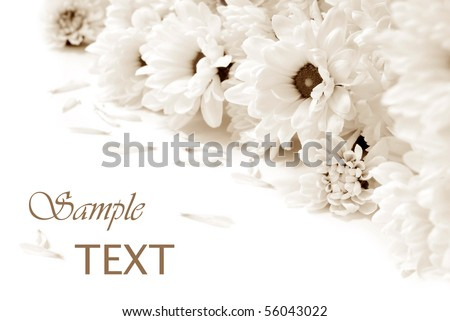 Soft focus sepia toned floral background with copy space. - stock photo