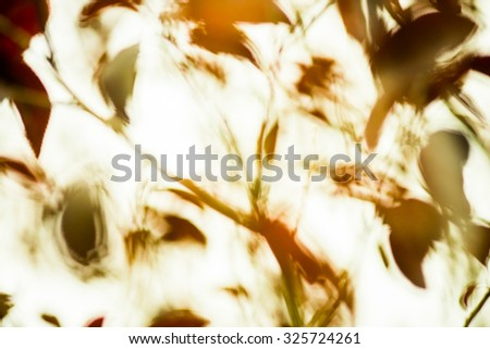 Soft focused abstract beautiful vintage tone nature leaves in the wind motion blur background - stock photo