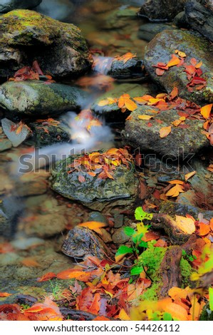 Soft focused image of a vermont stream in the fall - stock photo