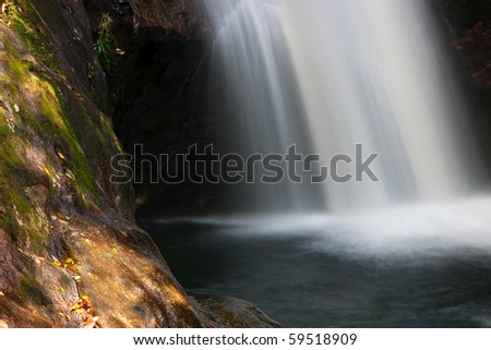 Soft movement of waterfall frames the forest water hole