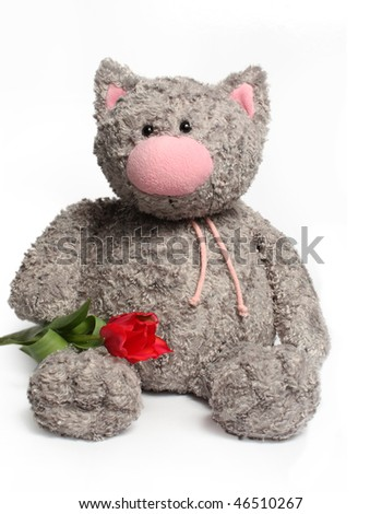 Soft plush cat with red tulips - stock photo