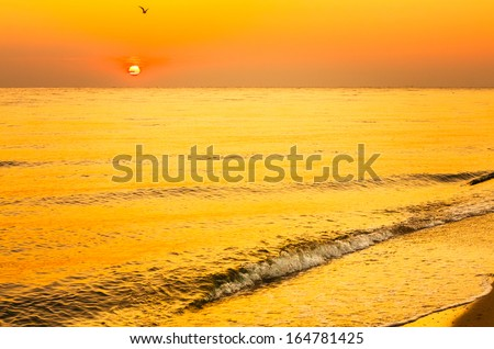 Soft sea ocean waves wash over golden sand background. Sunset, sunrise, sun - stock photo