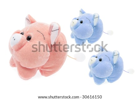 Soft Toy Piggies on Isolated White Background