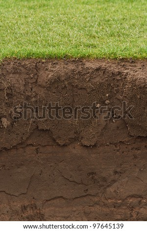 Soil and grass cross section - stock photo