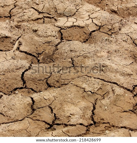 soil cracked - stock photo