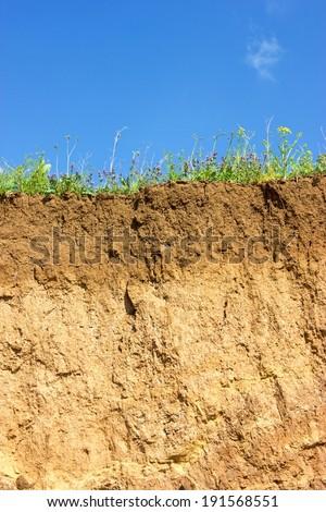 Soil cross section - stock photo