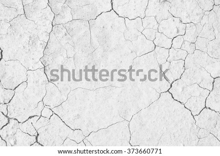 Soil drought cracks texture white background for design. - stock photo