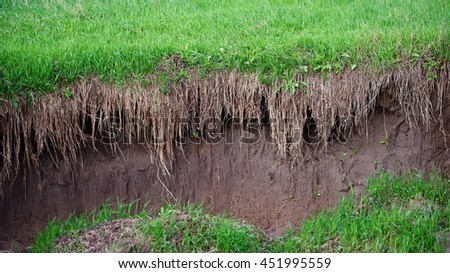 Soil Erosion In The Agricultural Field