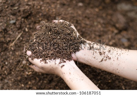 Soil in farmer arms - stock photo