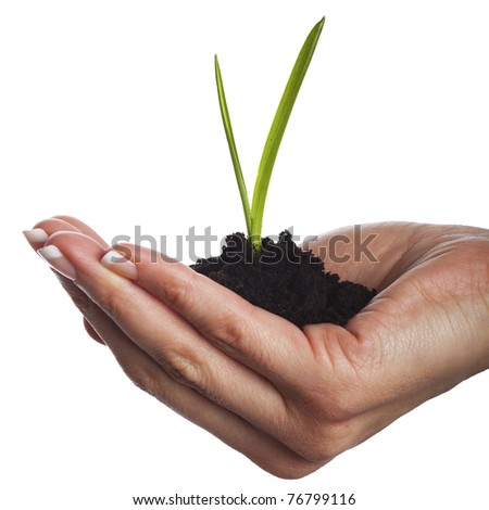 Soil in hand, isolated on white background - stock photo