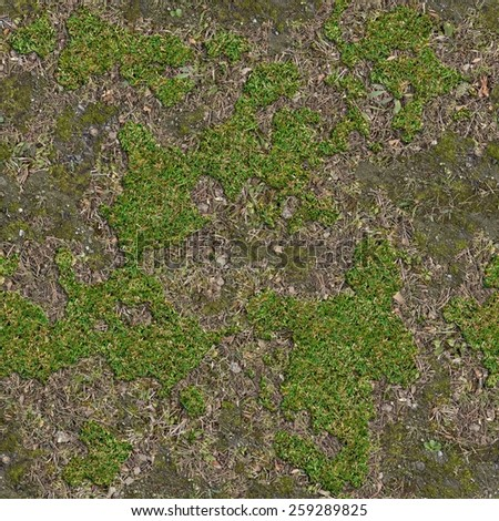 Soil is covered with moss and green grass seamless for Soil and green