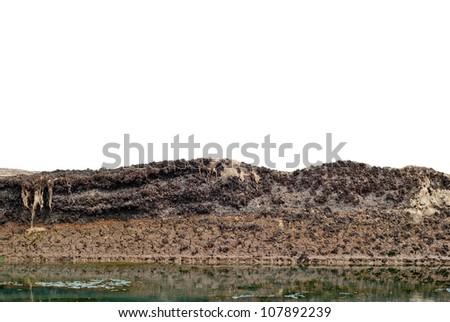 Soil layer - stock photo