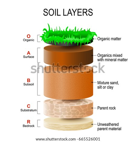 Soil profile diagram for children for Different types of soil for kids
