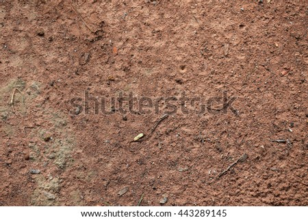 Soil texture. Soil wall. Soil background - stock photo