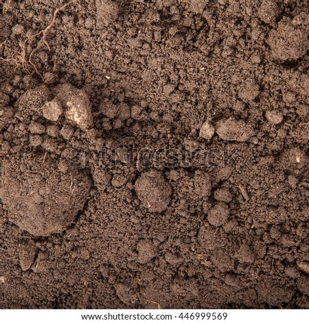 Soils for plants background