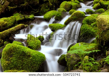 Sol Duc Creek, Olympic National Park, WA - stock photo