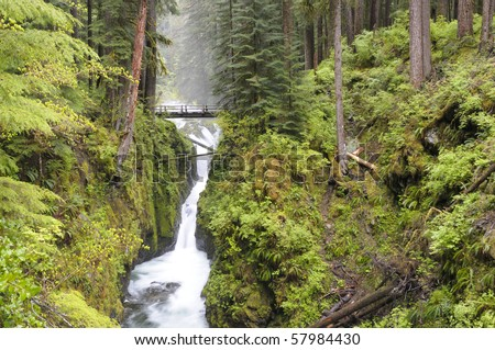 Sol Duc Falls at Olympic National Park, Washington State - stock photo