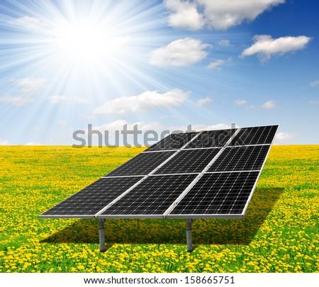 Solar energy panels on dandelion field  - stock photo