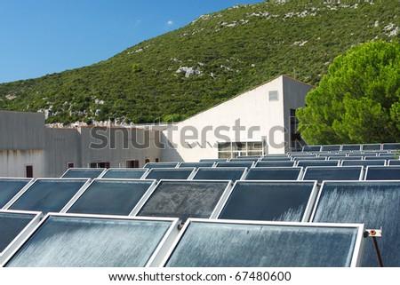Solar field - stock photo