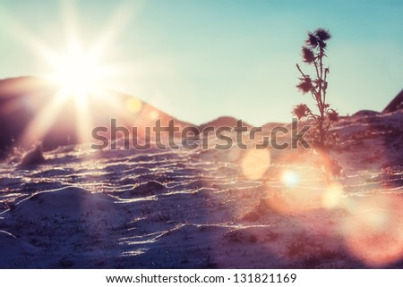 Solar flare on snowy slopes - stock photo