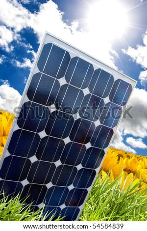 Solar panel in a yellow field of sunflower - stock photo