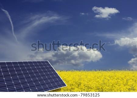 Solar panel in raps field - stock photo