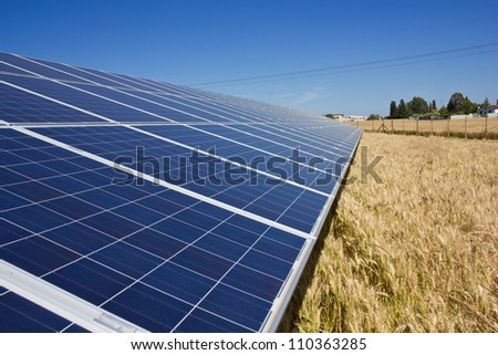 Solar Panels in a gold field - stock photo