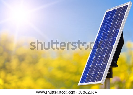 Solar panels in a yellow field