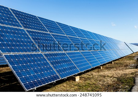 Solar panels in the field
