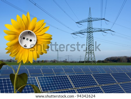 Solar park, sunflower with socket and power line - stock photo