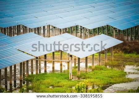 solar power in swamp , clean energy closeup - stock photo