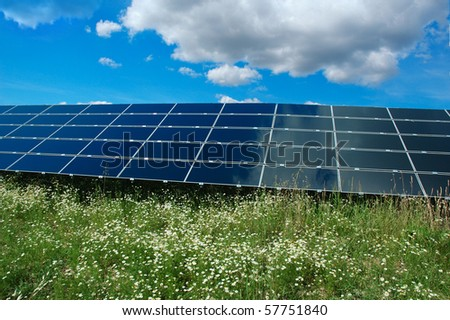 Solar power plant with chamomile