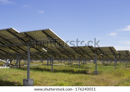 solar station in green environment