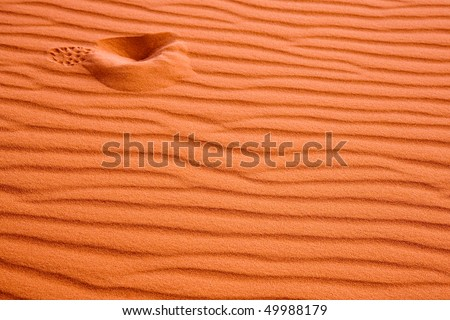 Solitary footprint in a sand dune