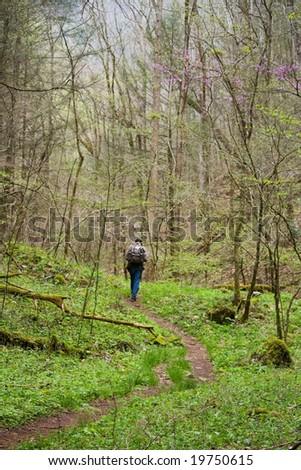 Solitary man trail hiking - stock photo