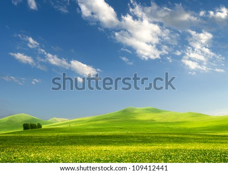 solitary tree on grassy hill and blue sky with clouds in the background - stock photo