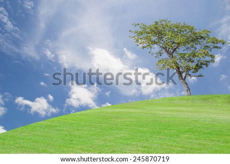 solitary tree on grassy hill and blue sky with clouds in the background. - stock photo