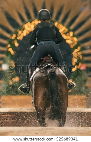 SOLNA, SWEDEN - NOV 24, 2016: Warmup before the Indoor Cross Country event at Sweden International Horse Show at Friends arena.