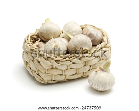 solo garlic in small braided basket, isolated on white - stock photo