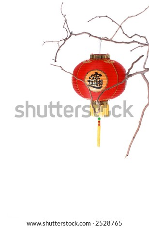 Solo Lantern on Bare Branch - stock photo