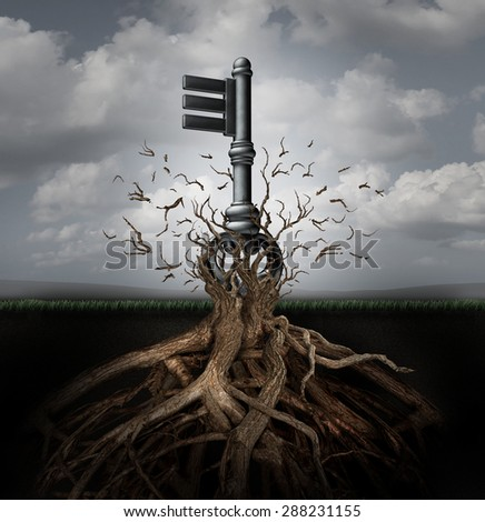 Solution concept as an old generic key emerging out of a tree as a business metaphor for the power of innovation direction and research discovery success. - stock photo