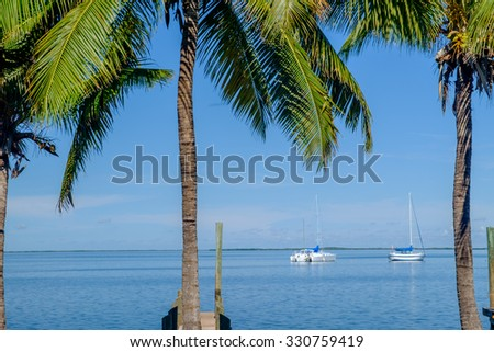Some beautiful palm trees frame a couple of large yachts or sailboats on Key Largo in the Florida Keys - stock photo