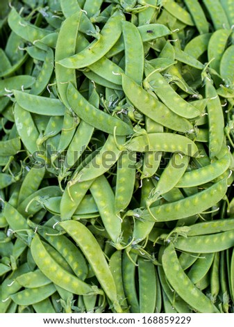 some fresh cropped green peas - stock photo