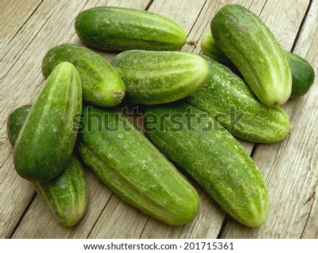 some fresh harvested cucumbers - stock photo