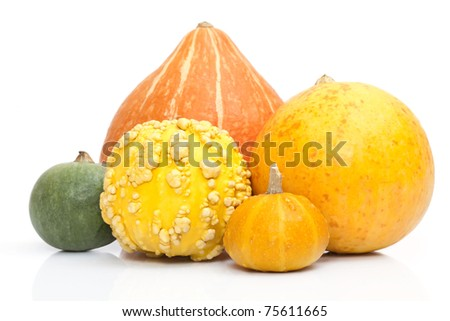 Some large and small pumpkins on a white background